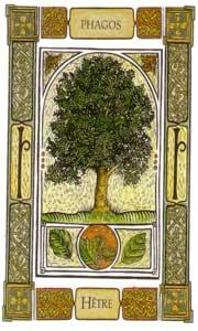 Oracle celtique